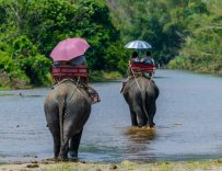 Thailand Tours & Excursions in Thailand