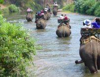 Tour Golden Triangle - 3 days/2 nights excursion in Northern Thailand